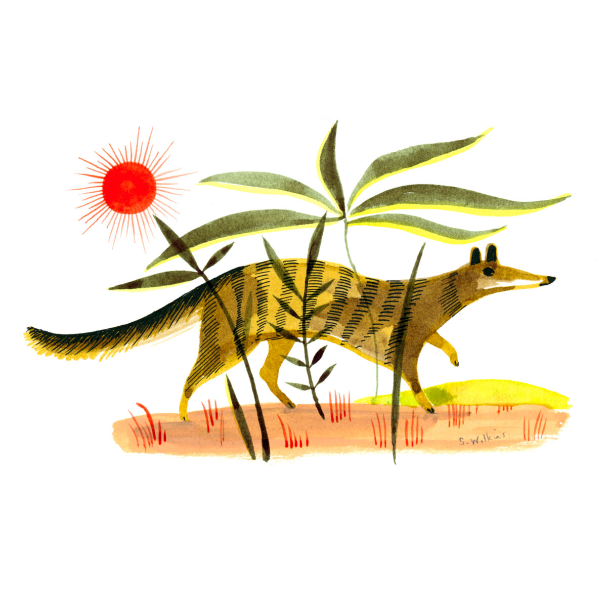 sarah_wilkins_illustration_cute_little_animal